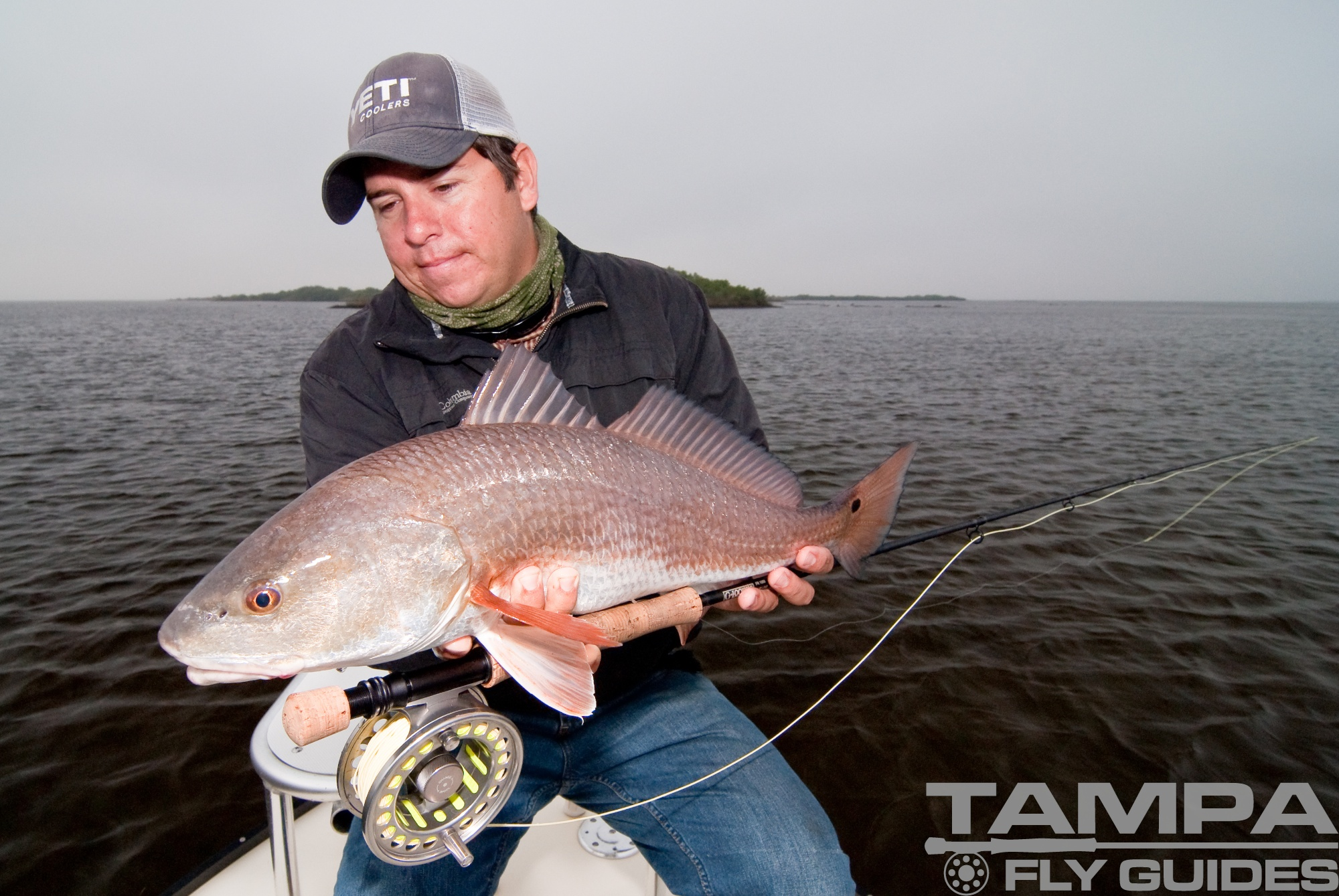 Tampa bay redfish tampa fly guides for Fly fishing bay area