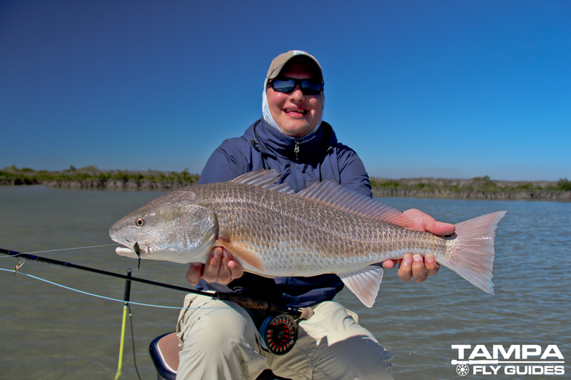 Fly-caught-redfish