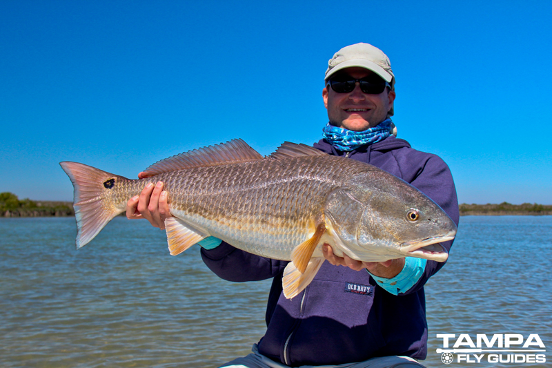 Fly fishing florida tampa fly guides for Where do flying fish live
