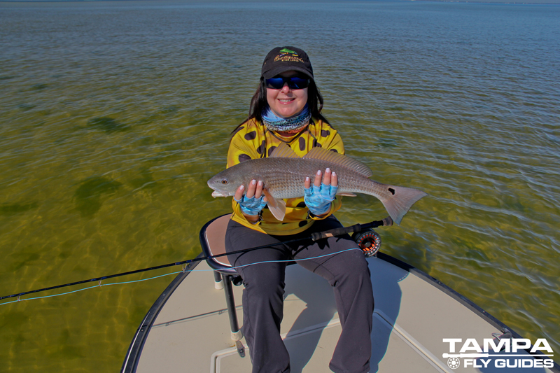 Florida fly fishing charters tampa fly guides for Fishing clearwater fl