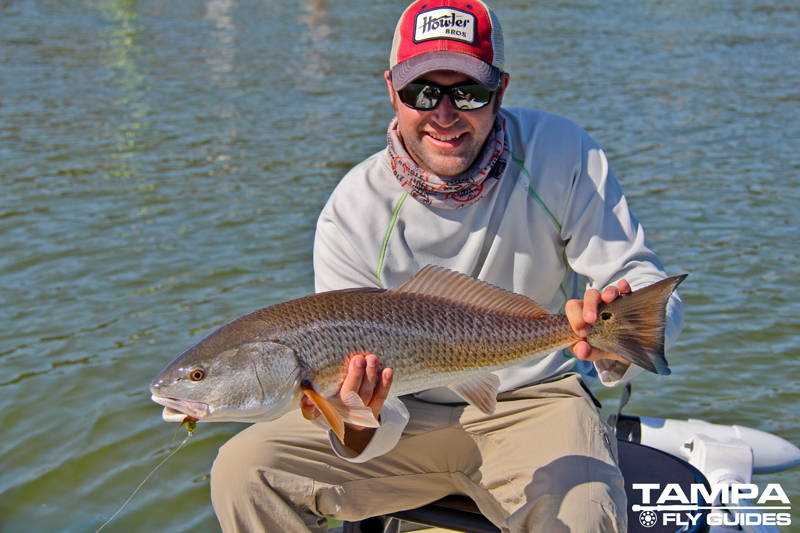 Florida fly fishing charters tampa fly guides for Tampa fly fishing