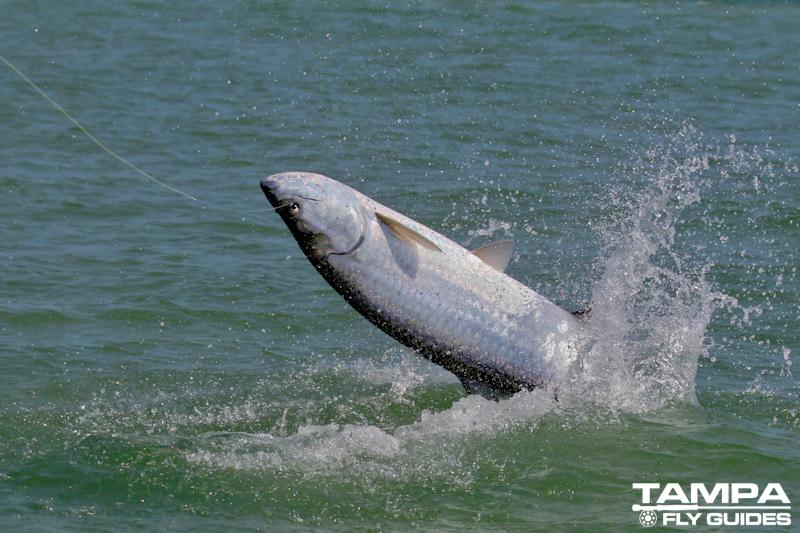 6-12 fishing-2086