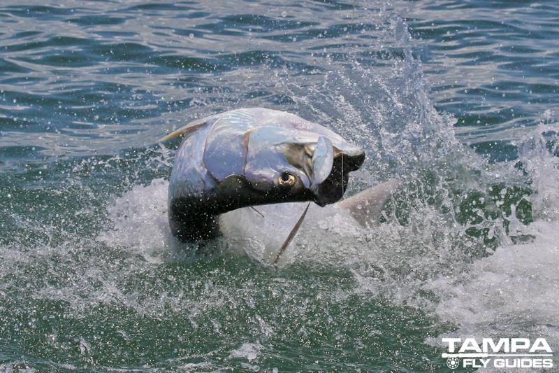 6-12 fishing-2258