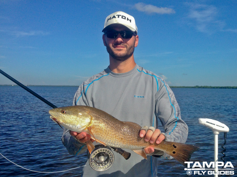 Fall fly fishing florida tampa fly guides for Tampa bay fishing outfitters