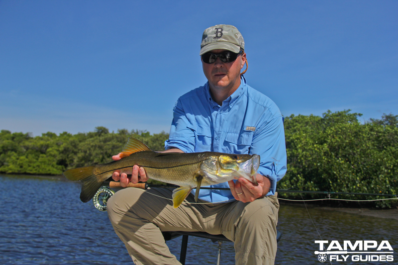 fly fishing florida st pete tampa tampa fly guides