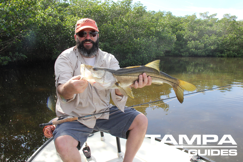 Need warm weather fly fishing tampa bay tampa fly guides for Fly fishing bay area